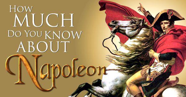 Napoleon IQ