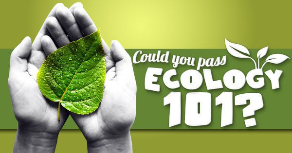 Could You Pass Ecology 101?