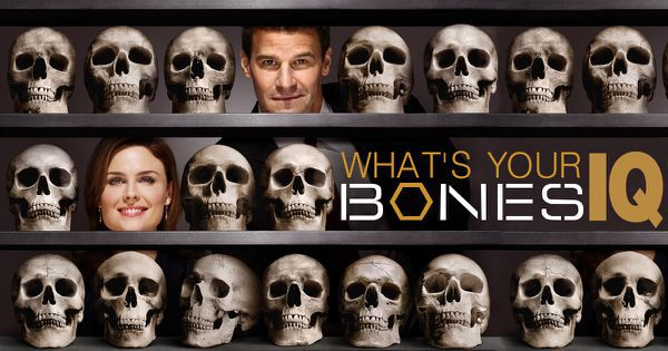 "What's Your ""Bones"" IQ?"